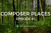 Beethoven's daily walk: The Vienna Woods – #composerplaces